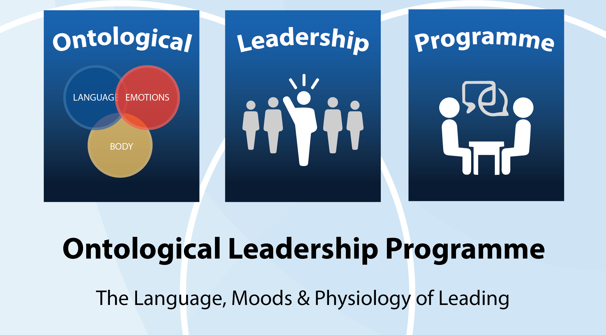 ontological leadership program