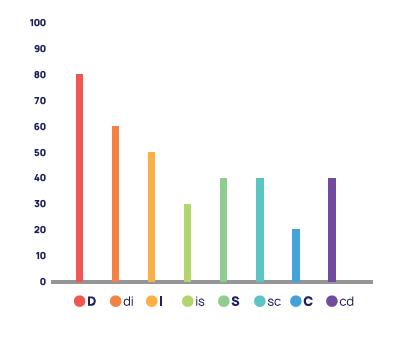 DISC Flow Chart